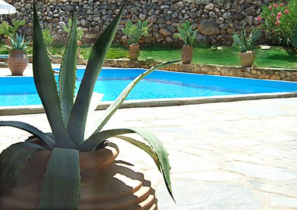 07.pool1.jpg
