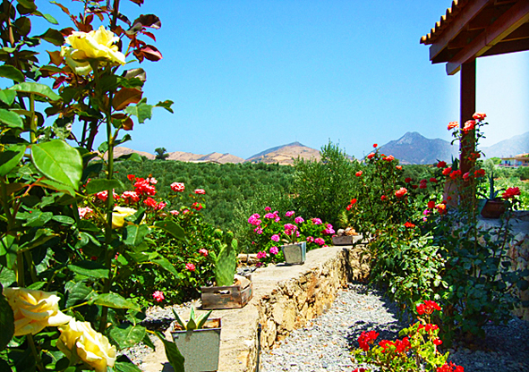 08.garden1.jpg