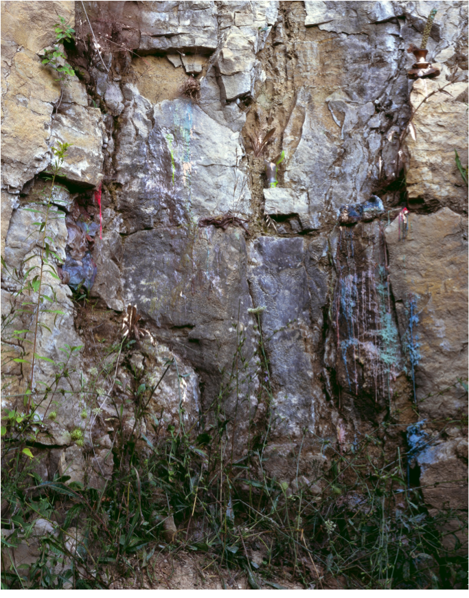 "Castings of Rockface, Paleozoic Plateau Region, Archival Pigment Print, 42x53, 2012 Johalla Projects and ACRE Residency Presents Heidi Norton's Reasons to Cut Into the Earth February 10-29th Opening Reception: Friday, February 10th, 7-10PM Daytime Hours: Saturday and Sunday 12-5PM, or by appointment Johalla Projects 1821 W. Hubbard Street, Suite 110 Chicago, Il 60622 Reasons to cut into the earth 1. An archaeological dig: a prevalent way to recover human history is through archaeological excavation. Archaeology is a loose discipline. The methods of unearthing are scientific and restrained, but the things you look for when digging like an archaeologist are numerous and sometimes completely unknown. 2. To see what's growing underneath. She dug holes into the earth all summer, her hair tied up in a bandana. She built a studio in the woods, using the holes she dug as molds into which she poured colored wax, capturing flowers, insects, and weeds in the viscous bright liquid. (When big chunks of glaciers get stuck in earth, they create giant pools of ice that result in holes when they melt. Geologists call these holes ""kettles,"" and lakes often form in these depressions.) When she was a young girl in West Virginia, she dug holes to explore the parts of the world that were just barely invisible but still attainable to her. The work that she did digging those holes was unprofessionalized and undifferentiated. She could have been looking for fossils or diamonds or evidence of human history before her. 3. A geology sample: this object contains a hidden story that helps to analyze the history of the land. Geology samples are beautiful tubes of stratified sediment, about as wide as tennis ball containers, created through special methods of drilling. You have to learn the language of the colors and textures of compacted sediment layering the cylinder to tell a story about the hidden parts of the earth. See: archaeology. 4. Quarries and mines: this is a very violent thing to do. People who are paid to do this work often die. Sometimes it creates lakes to swim in after. (She grew up swimming in a quarry, so even to this day she cannot think of quarries without the warmth of that memory coming over her.) With quarries and mines, you are looking for something valuable, for treasures that you will bring elsewhere. 5. Gardening: this is also a fairly violent way to cut into the earth, depending on what you're gardening and whether you plan to pull it up or look at. Page 5  In previous works Heidi uses prefabricated molds in a controlled studio environment to create geometric forms of wax and resin with plants embedded inside. In her new work, she take these traditional studio materials and cast them into the earth, layering plants and other life inside. Above, ""Page 5"", is an excerpt from a chapter in ""Art in the Earth: A Field Guide from the Soil to the Studio"", an artist book that will be included in the exhibition. Heidi is collaborating on this book project with writer Monica Westin. One version, using appropriated album boxes, will take the form of an artist monograph and field guide. A second variation will be available as a limited edition artist book. Heidi Norton, originally from Baltimore, MD received her MFA from the School of the Art Institute of Chicago, in 2002. Her work has been exhibited all over Chicago in venues such as Monique Meloche Gallery, Dominican University, and Andrew Rafacz Gallery. Nationally and internationally, Norton's has been exhibited at the Contemporary Art Museum in Baltimore, the Knitting Factory in New York, as well as in Los Angeles, London, and Valenica, Spain. This past year she had solo shows in San Francisco at Hungry Man Gallery, EBERSMOORE and NEIU in Chicago. Her solo exhibition at EBERSMOORE was reviewed in the September 2011 issue of Frieze. She was voted solo show of the year by New City 2011 and Top 10 Art Exhibition in Chicago  2011 by TimeOut. She is represented by EBERSMOORE. Find Heidi Norton here and ACRE Residency here."