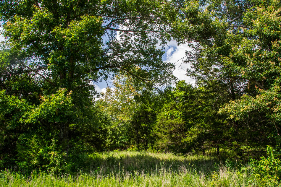 5 Ozark County country acres with well