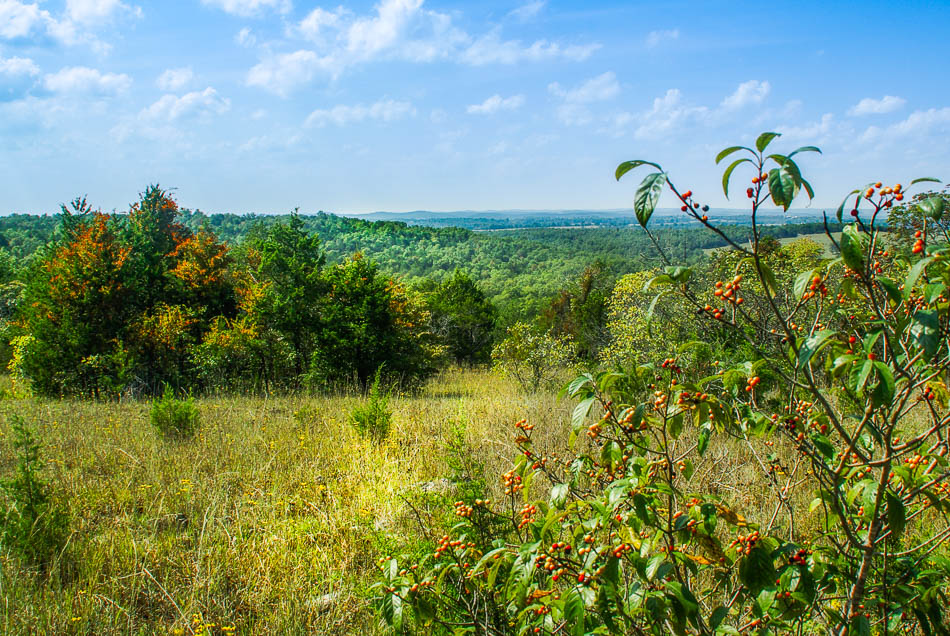 115 Country Acres Near Bull Shoals Lake 1