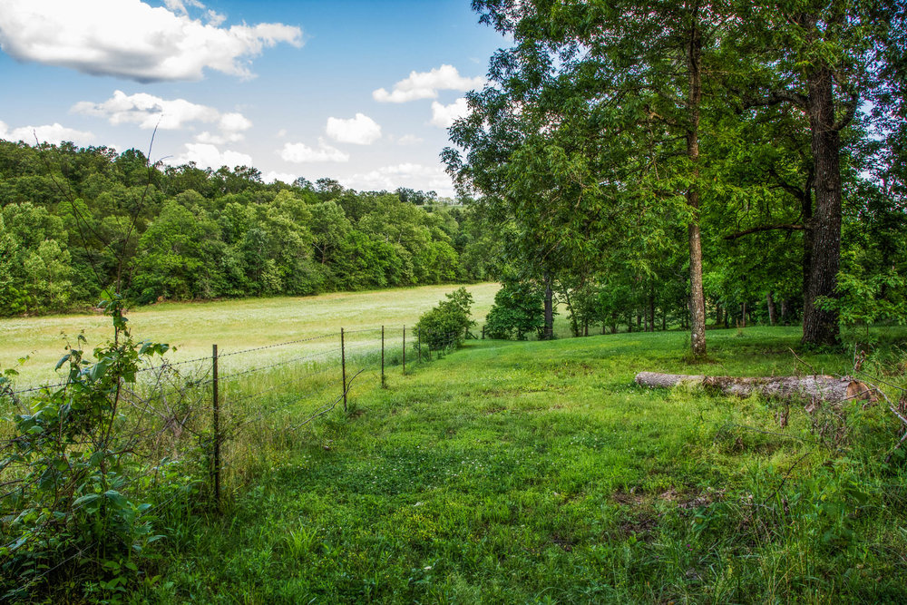 153 Acres Near Bull Shoals Lake 1