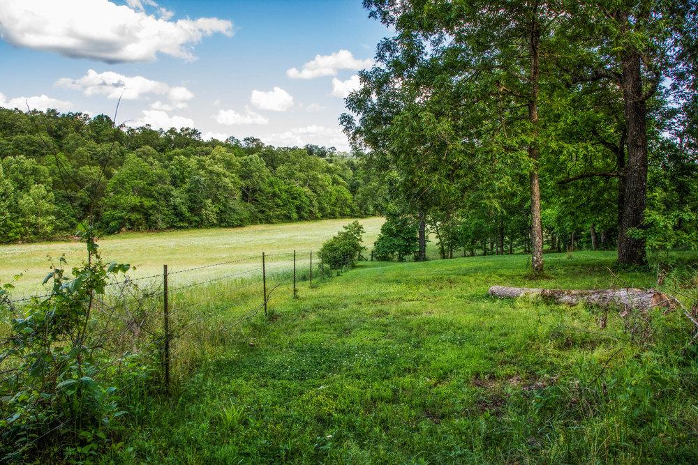 153 Acres Near Bull Shoals Lake 1