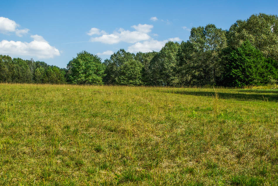 Ozark County acreage with well