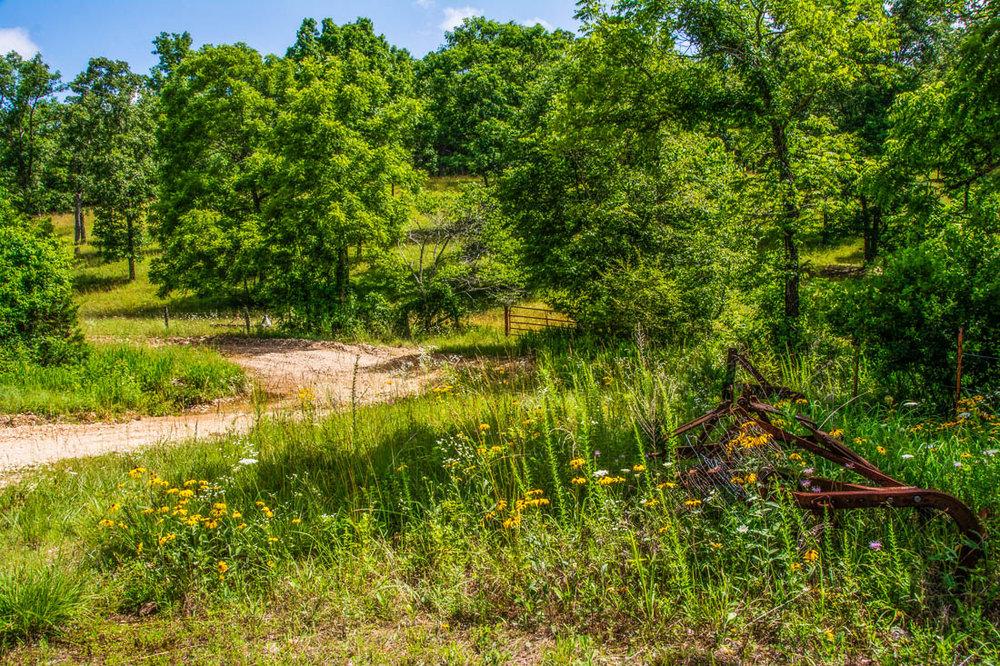 Ozark County farm near Gainesville, Missouri