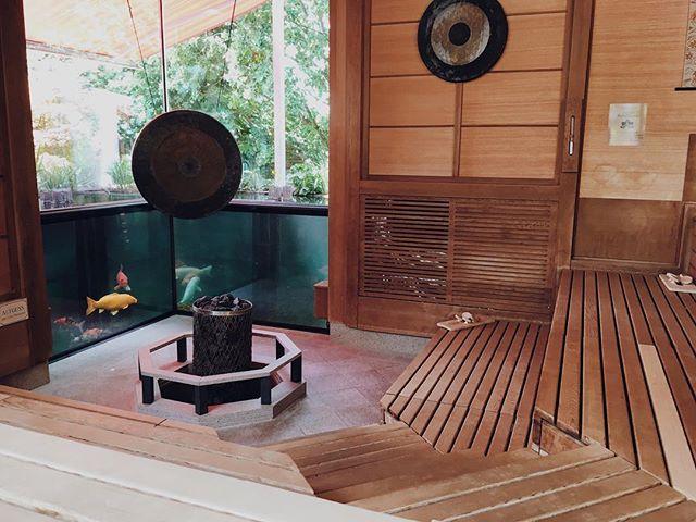 🐠🐡 Sauna with aquarium!! 👌🏼