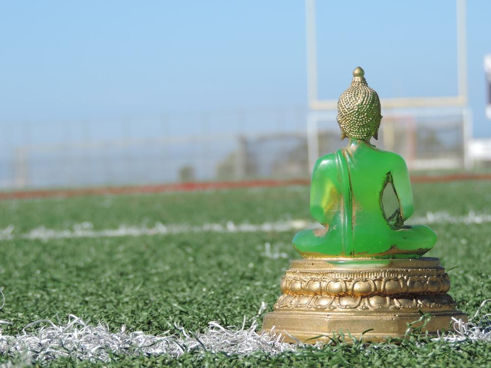 Buddha Gridiron.JPG