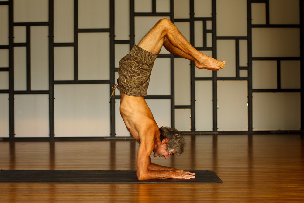 Gerry pausing in Pincha Mayurasana - Scorpion Pose