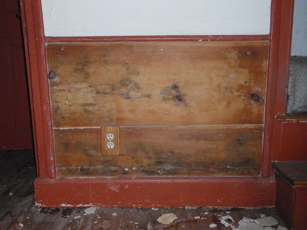 Some of the paneling in the historic kitchen that is still in place.