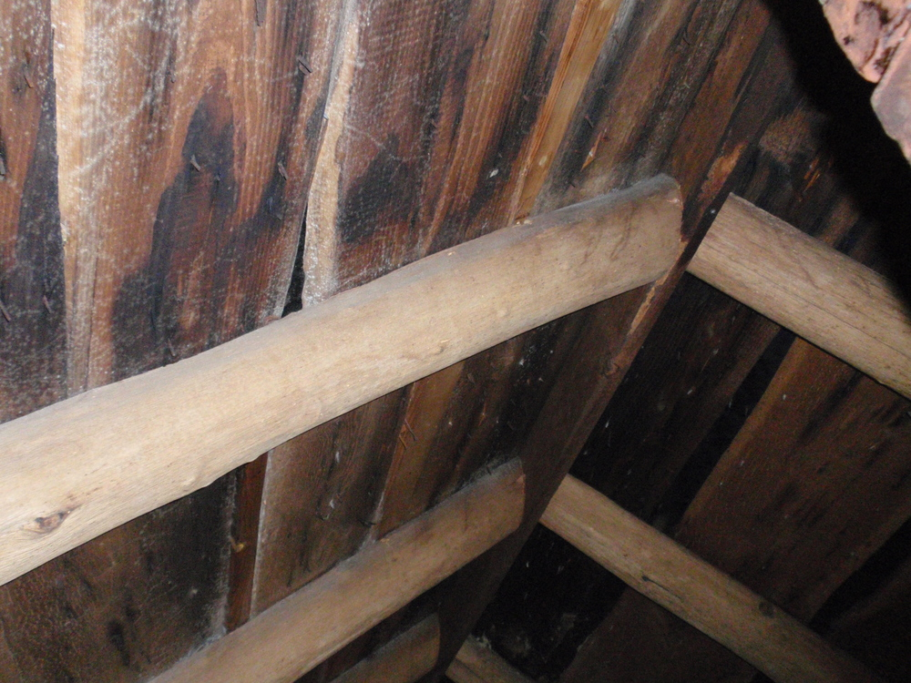 Another clue to the building's construction date is its framing. The framing members are smaller than those from the 18th century. Here in the attic/crawl space, the rafters are joined to a ridgeboard at the peak of the roof. Before about 1820, this ridgeboard would have been a much heavier ridgebeam.
