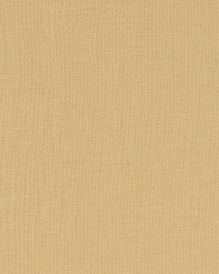 Cardboard Solidz 7813-58