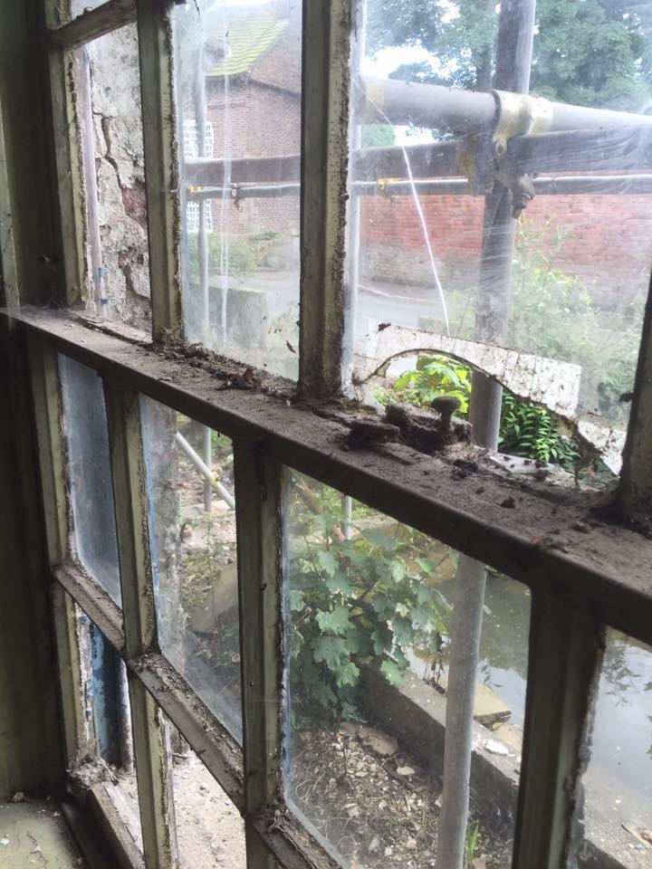 sash window draught proofing