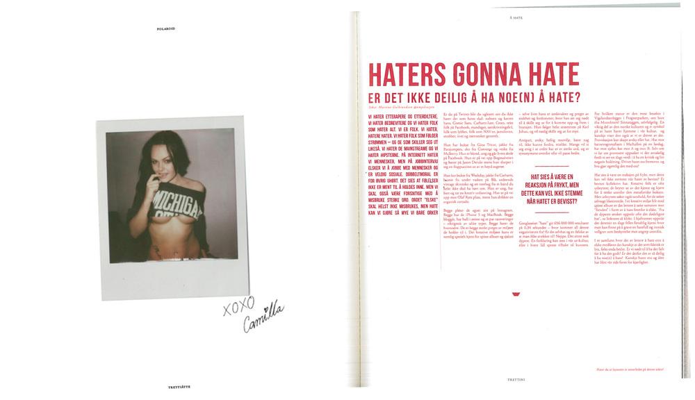"""""""Er det ikke deilig å ha noe(n) å hate?"""" , ANNO 2013 Klisjé."""