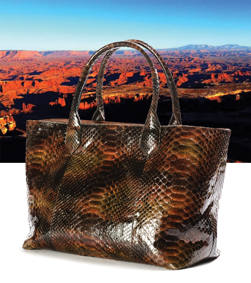 Madison Shopper, Autumn Python. Background: Islands of the Sky, Utah