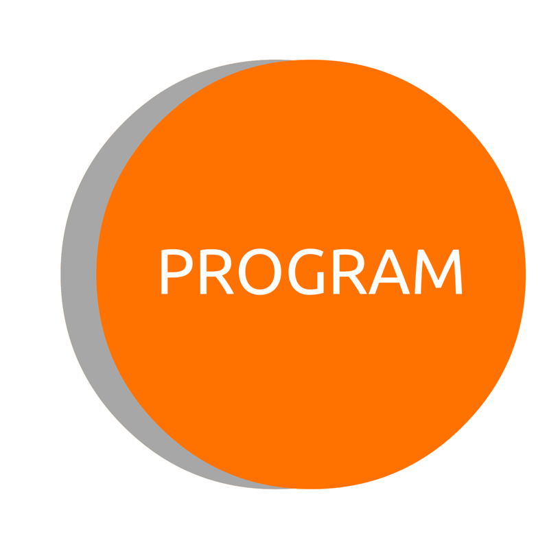 Copy of Program
