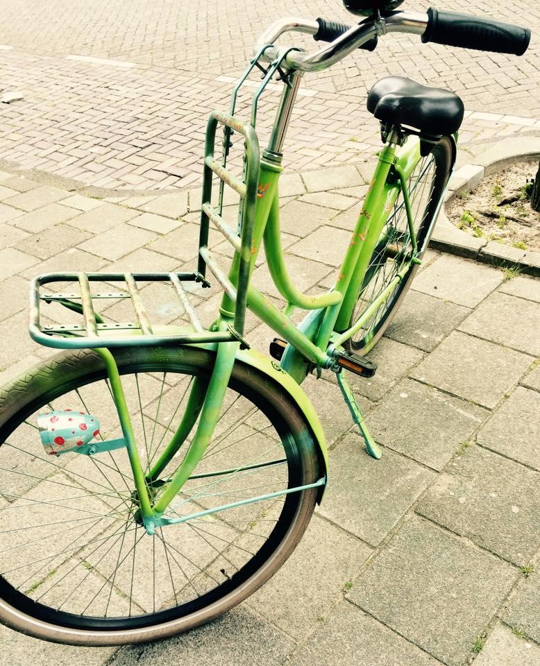 Sonja's bike.jpg