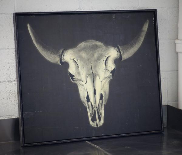 buffalo_skull_en_grande.jpg