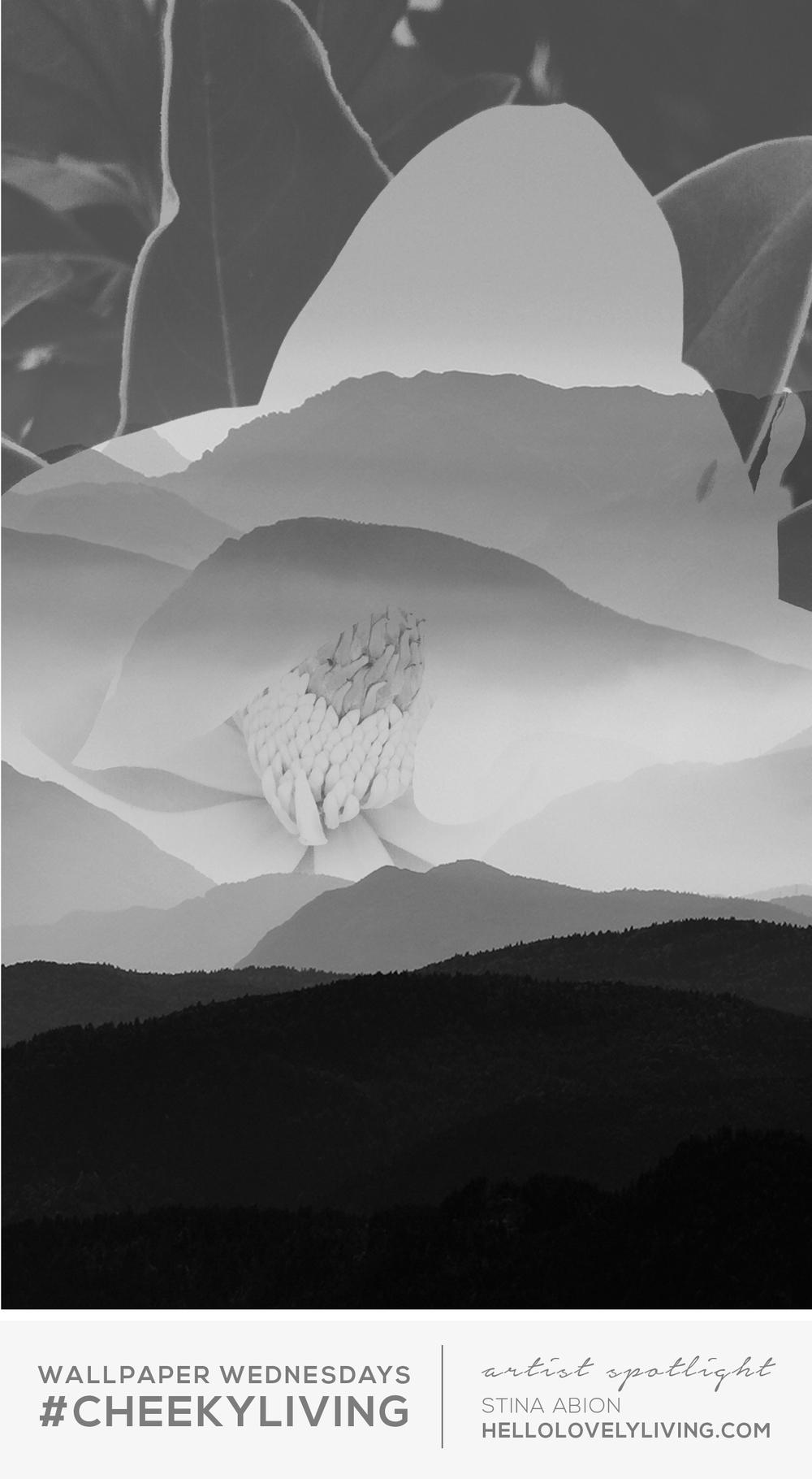 Wallpaper Wednesdays 2 | Black + White