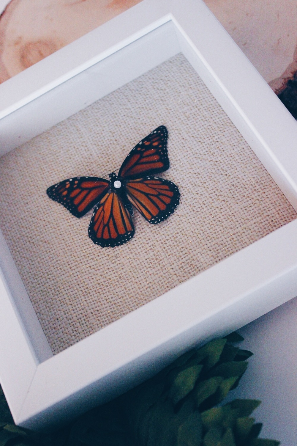 DIY | Butterfly Shadow Box