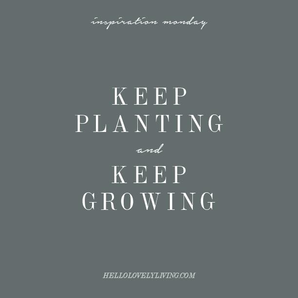 Inspiration Monday | Perseverance