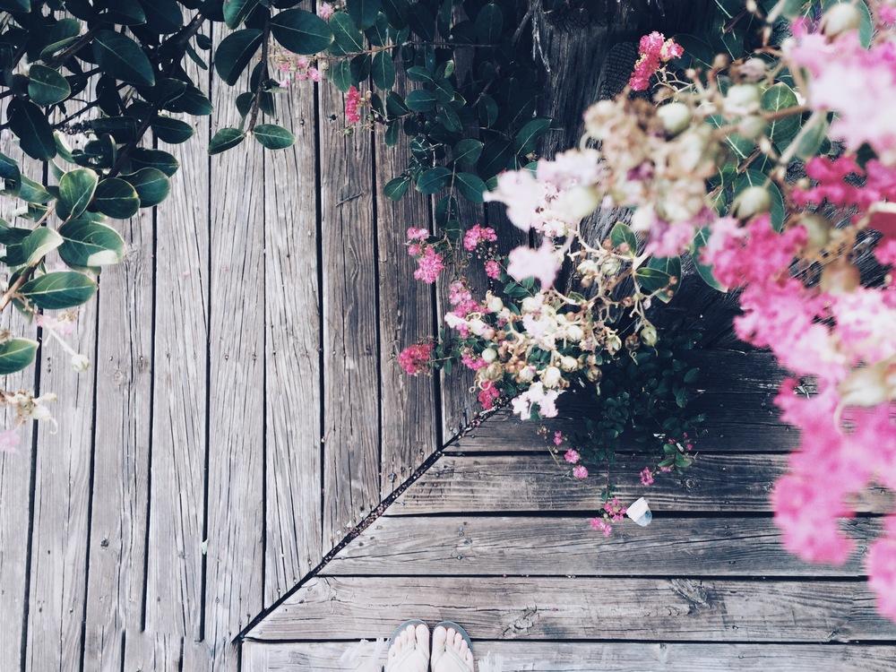 Hello Lovely Travel | Hafer Park | Edmond, OK