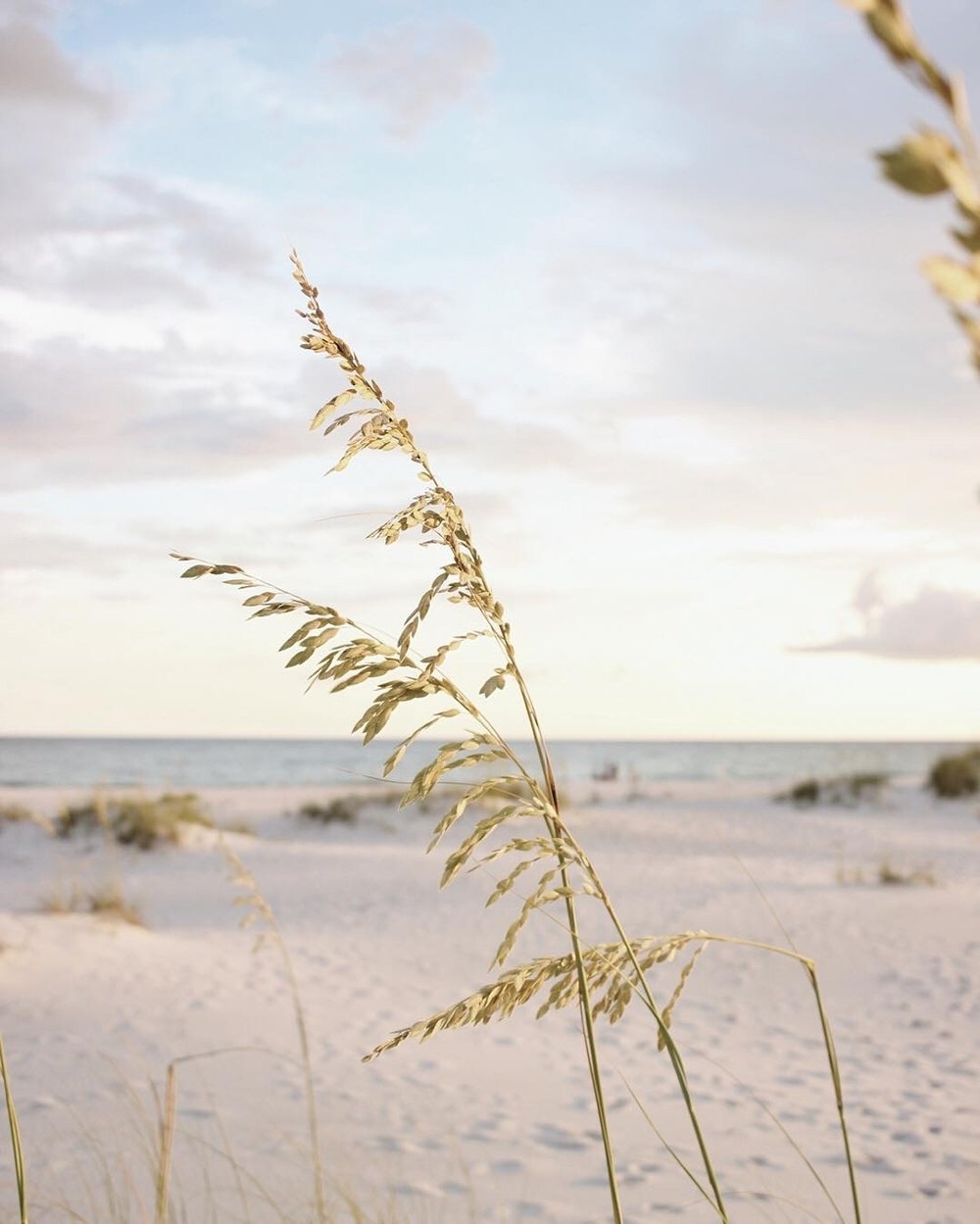 Hello Lovely Travel | Destin, Florida