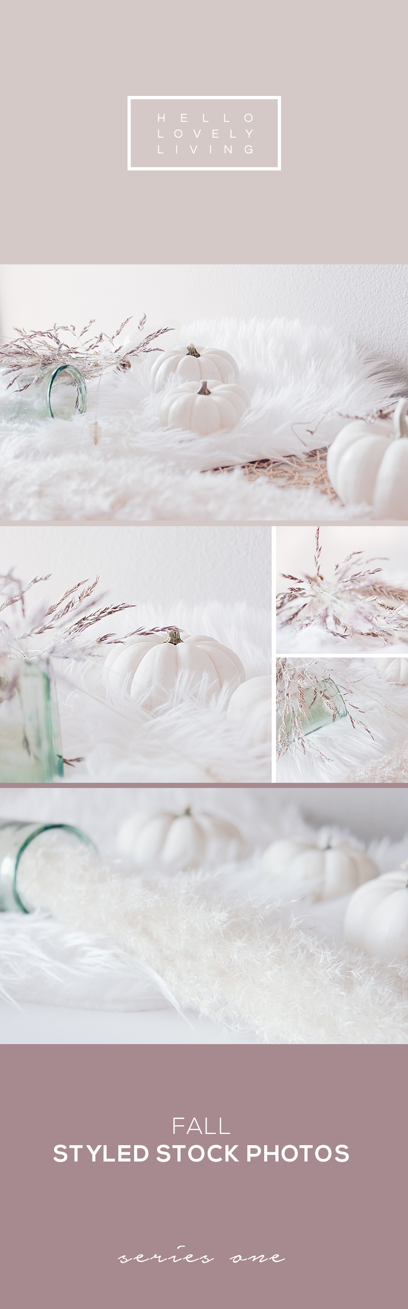hello-lovely-living-styled-stock-fall-1.png