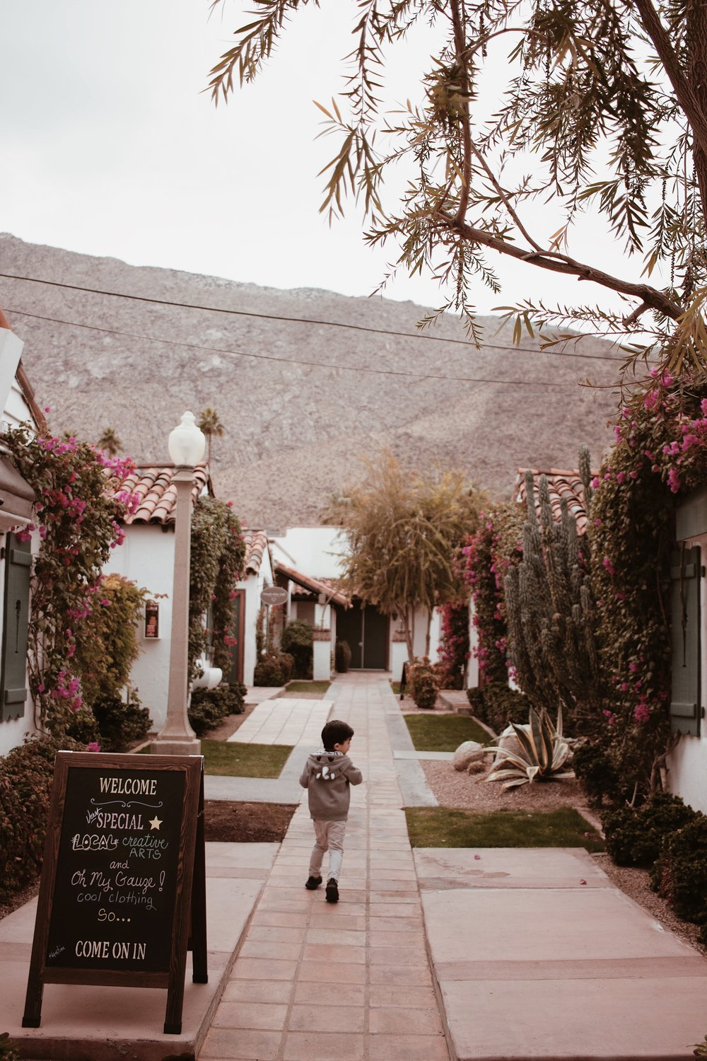 hellolovelyliving.com | Kid-Friendly Things To Do in Palm Springs