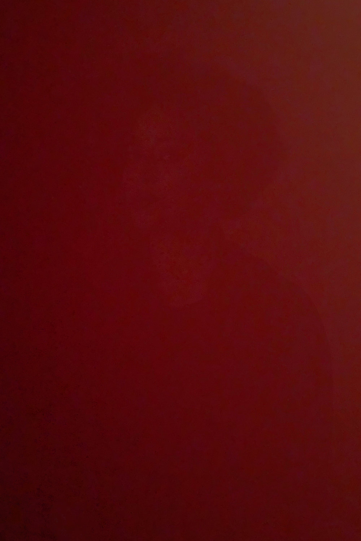 DinaKantor-Silenced-3.jpg