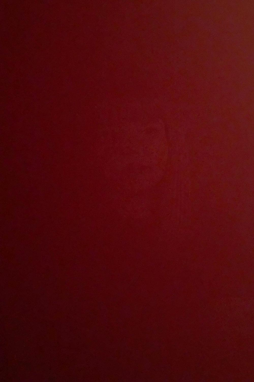 DinaKantor-Silenced-9.jpg