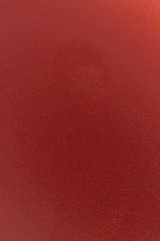 DinaKantor-Silenced-8.jpg