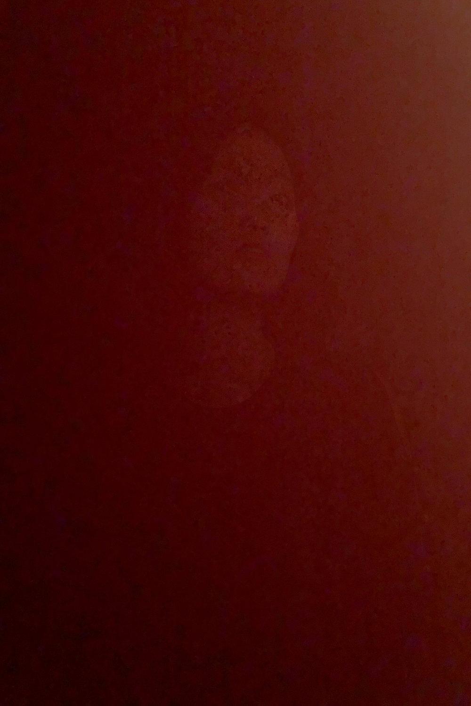 DinaKantor-Silenced-21.jpg