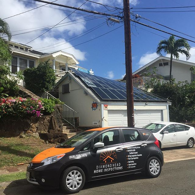 Daimond Head Home Inspection our in the wild. #hawaii #kaimuki