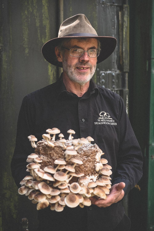 mushrooms-26.jpg