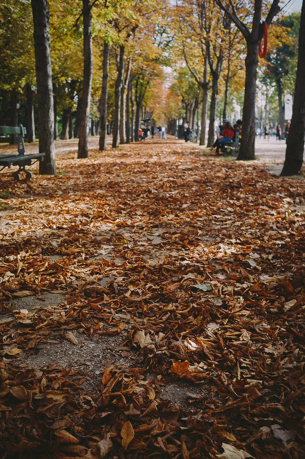 fujix100 street photography-26.jpg