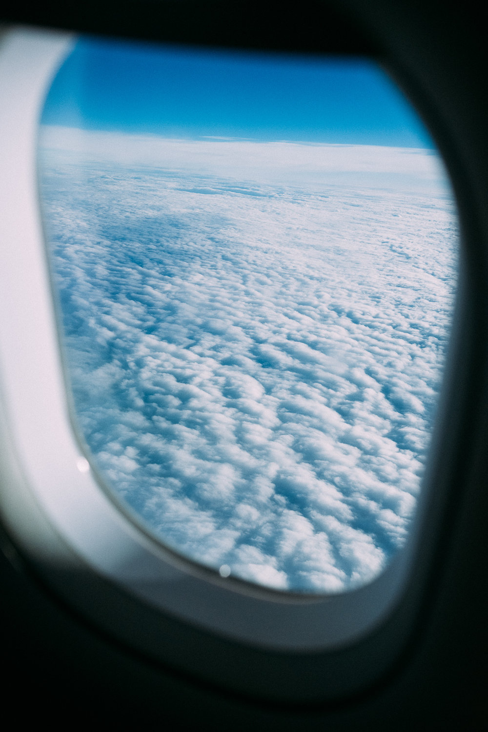 Obligatory airplane window photo.