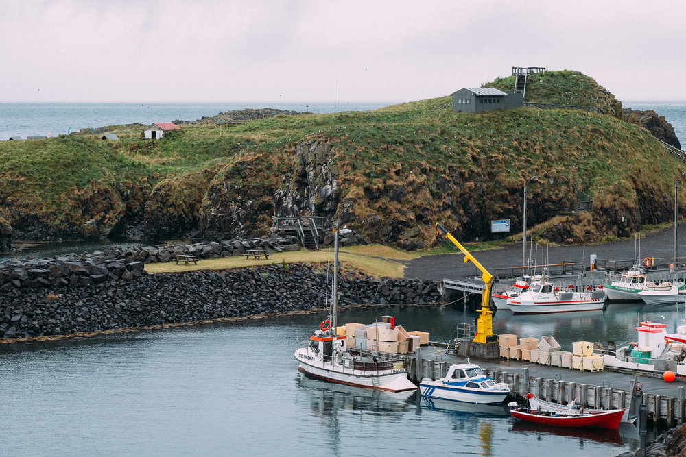 Puffin island, behind the marina.
