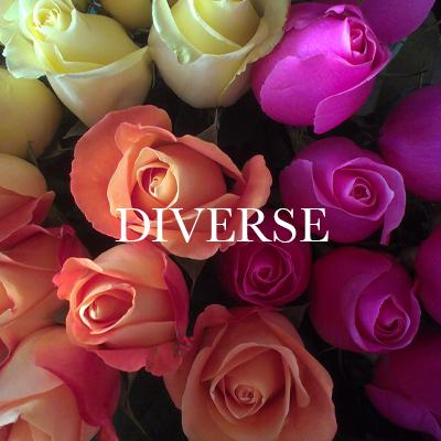 DIVERSE.jpg