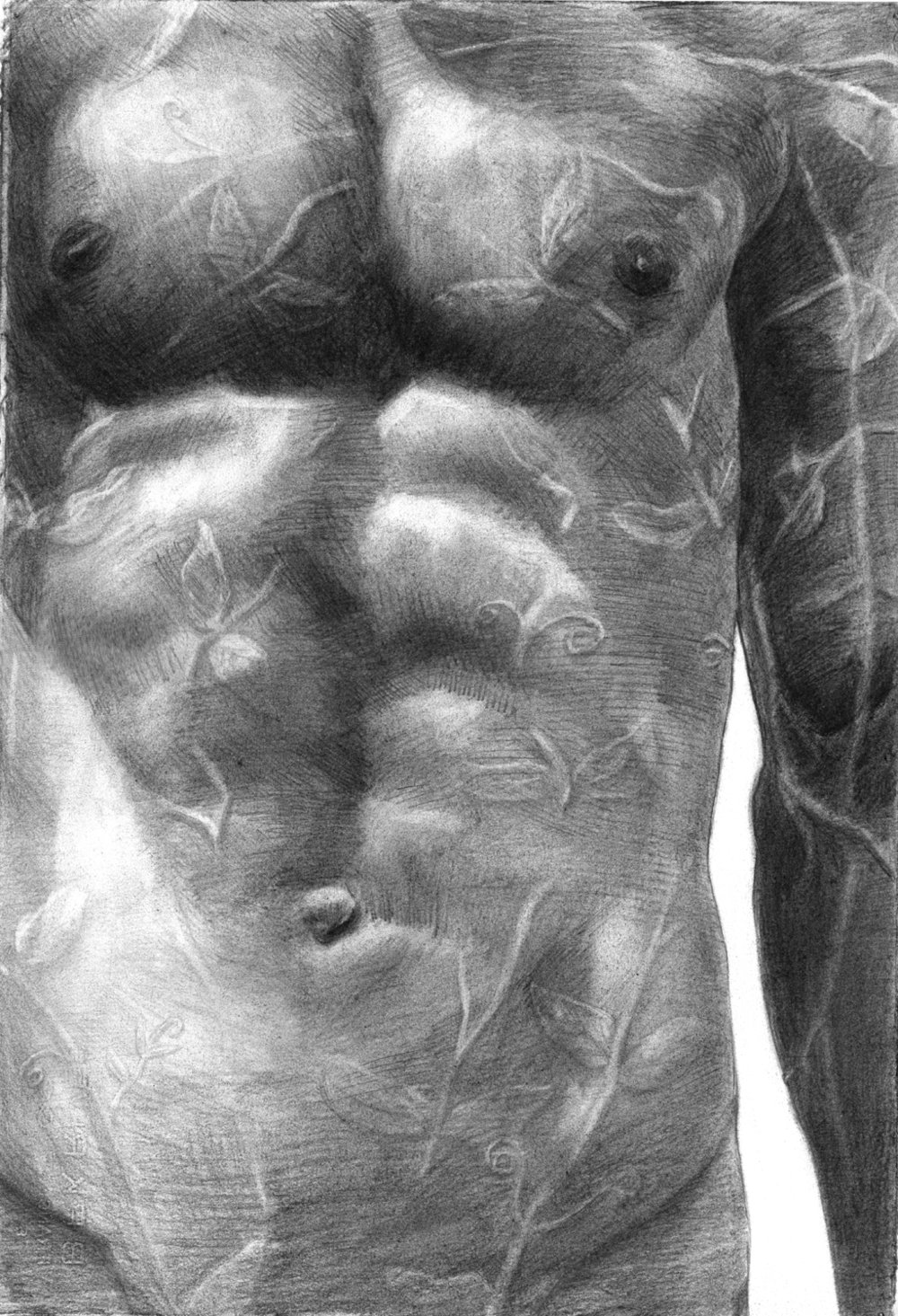 """Nature Boy"", 14"" x 22"", Graphite on Rives BFK, 2009. (SOLD)"
