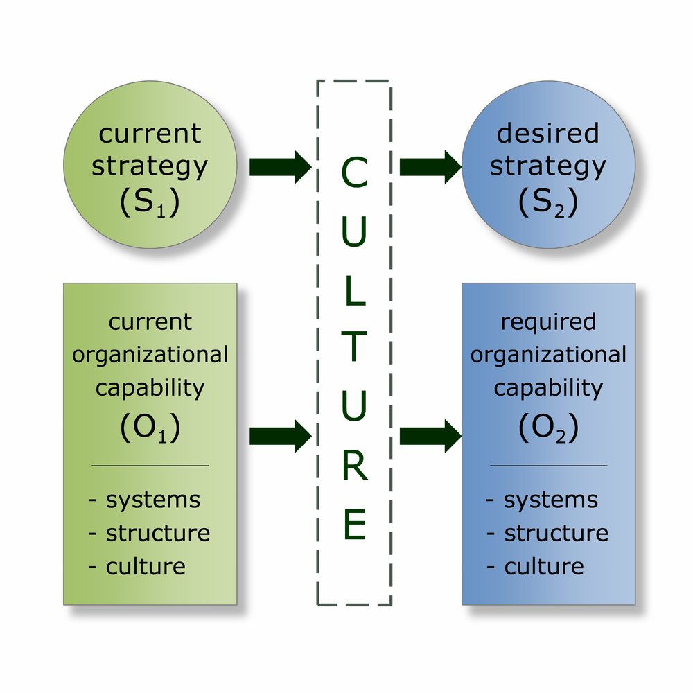 FMG Leading ISC Framework: Intentionally Designed Culture