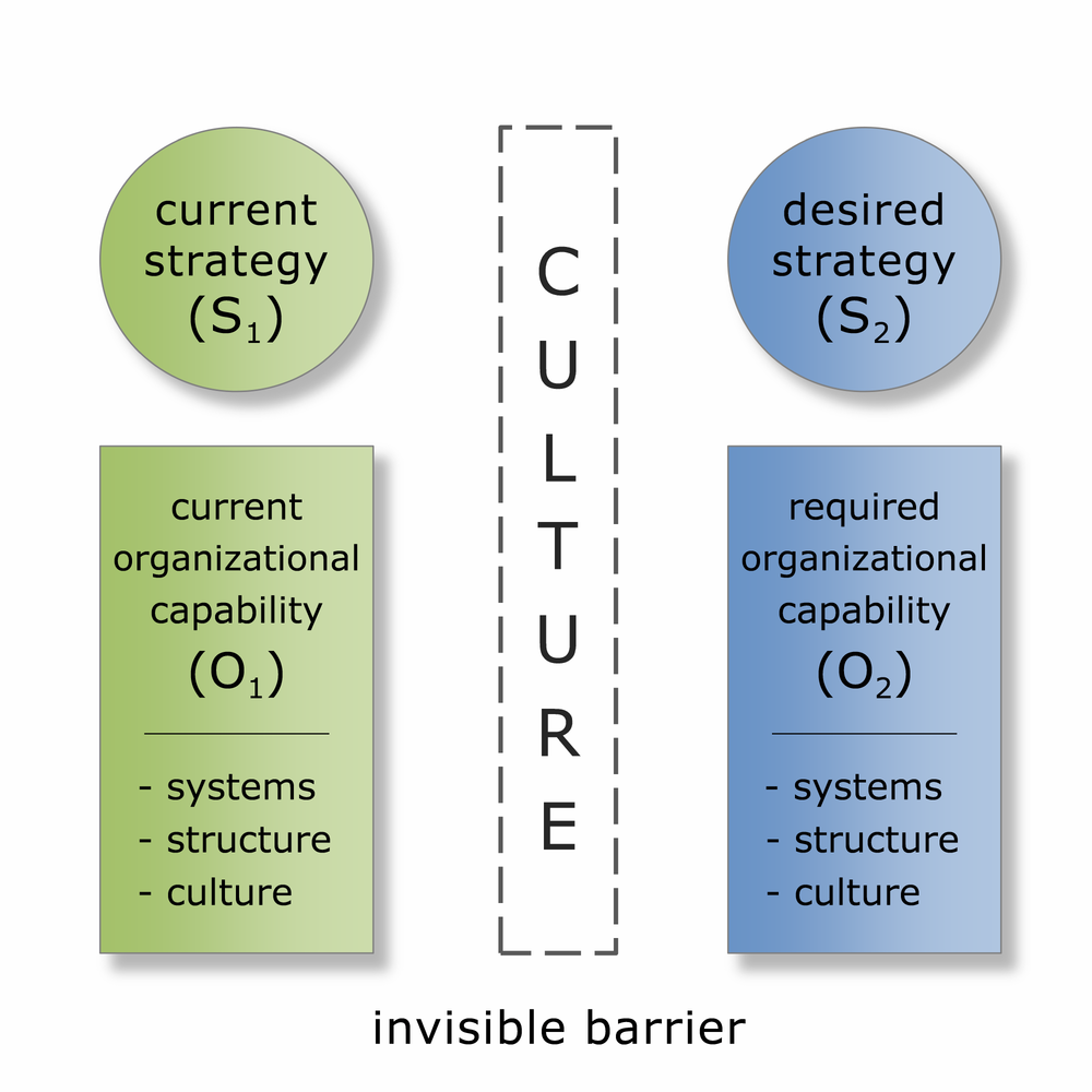 FMG Leading ISC Framework: Culture