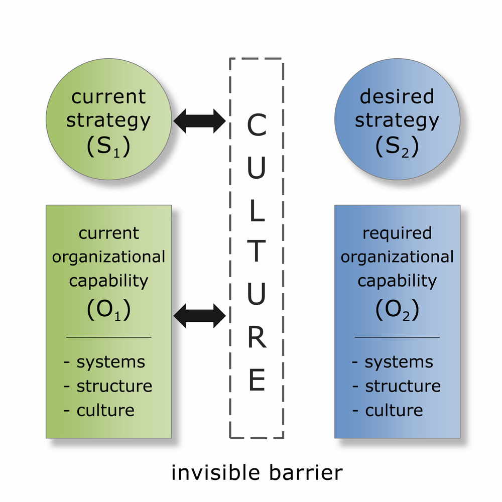 FMG Leading ISC Framework: Culture: The Invisible Barrier