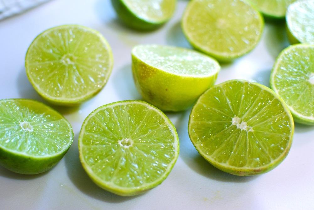 Raw Vegan Paleo Key Lime Pie Recipe The Love of Food Blog