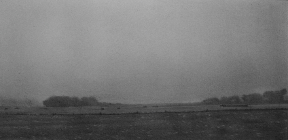 Foggy Field.jpg