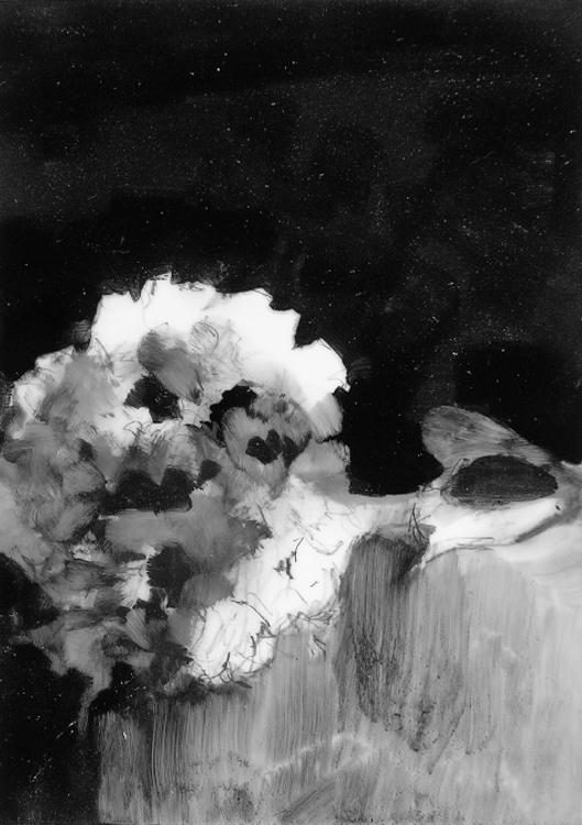 04-Hydrangea1.jpg