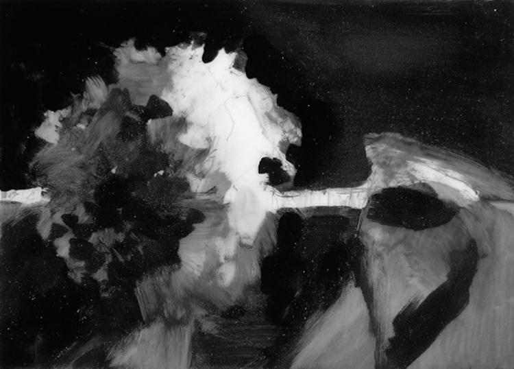 05-Hydrangea1.jpg