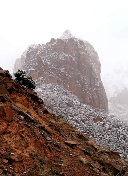 Zions Snow