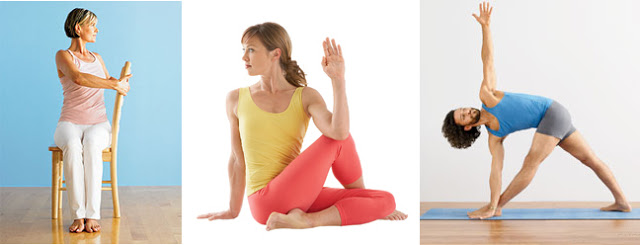 yoga for the immune system : wholehearter