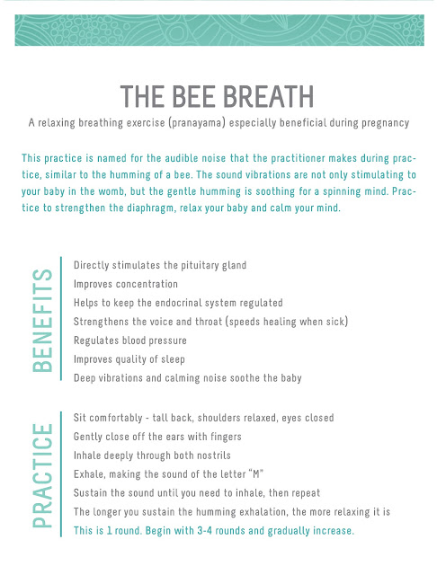 the bee breath - pranayama : wholehearter