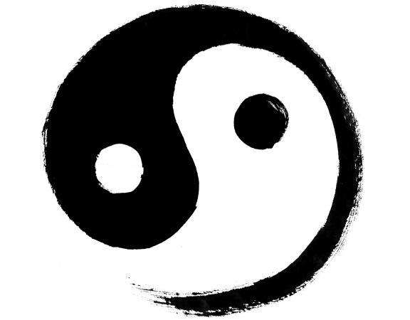 Yin Vs Yang Self Care Wholehearter Yoga